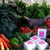 Rural Intelligence Food Section Image