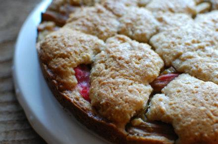rhubarb cake fin