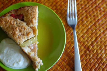 rhubarb cake slice