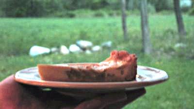 rhubarb tart slice